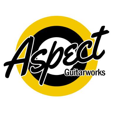 Guitar Modifications